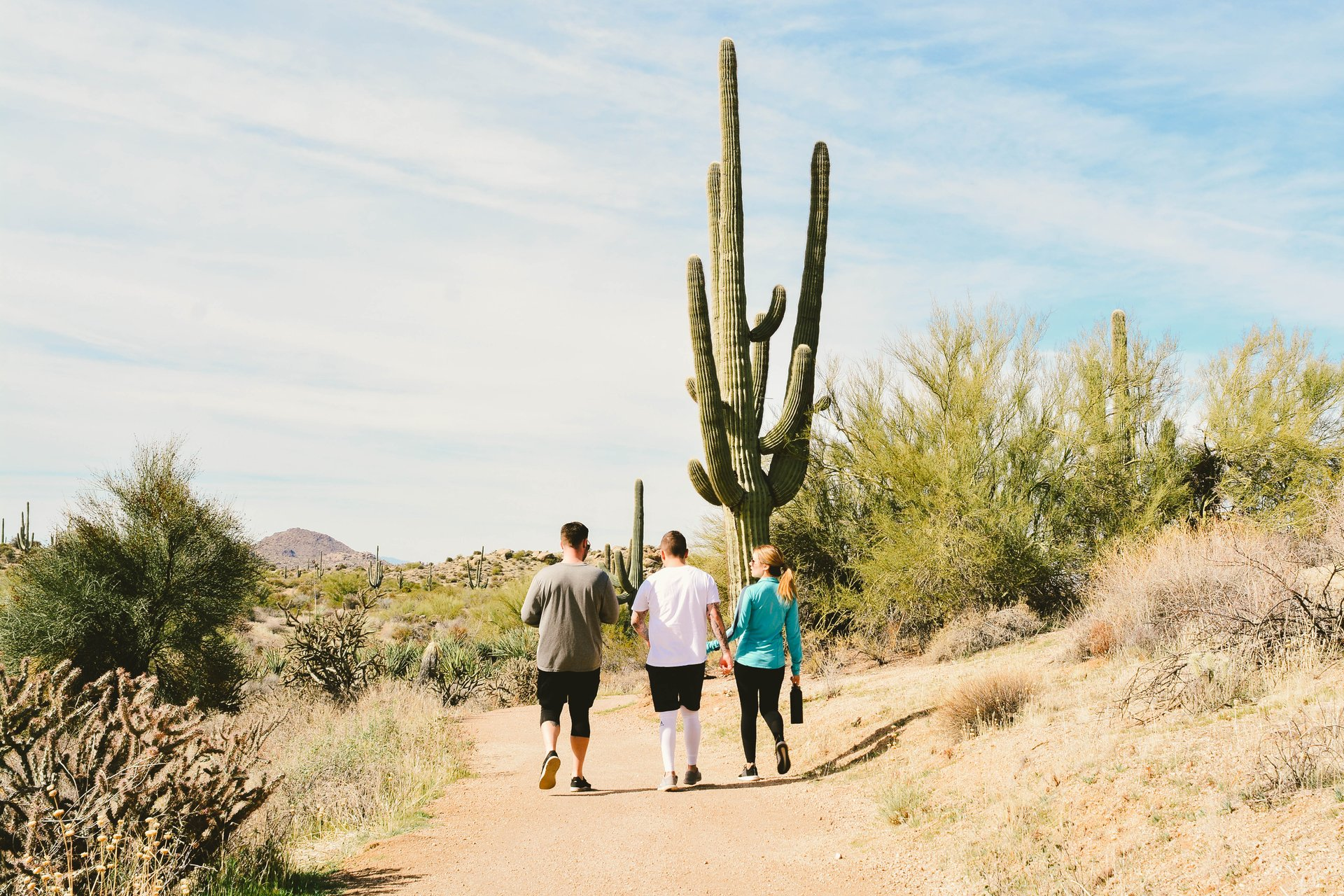 Celebrating the McDowell Sonoran Preserve