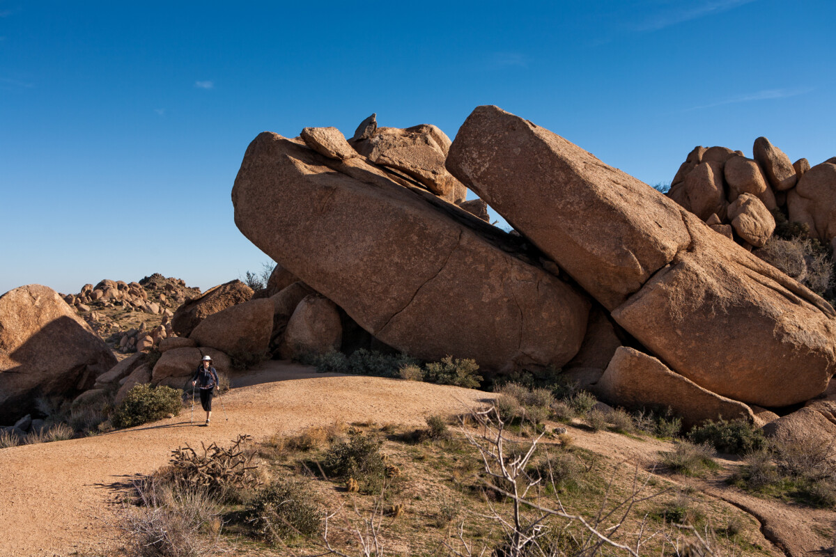 Enjoy the Great Outdoors With These Scottsdale Hikes
