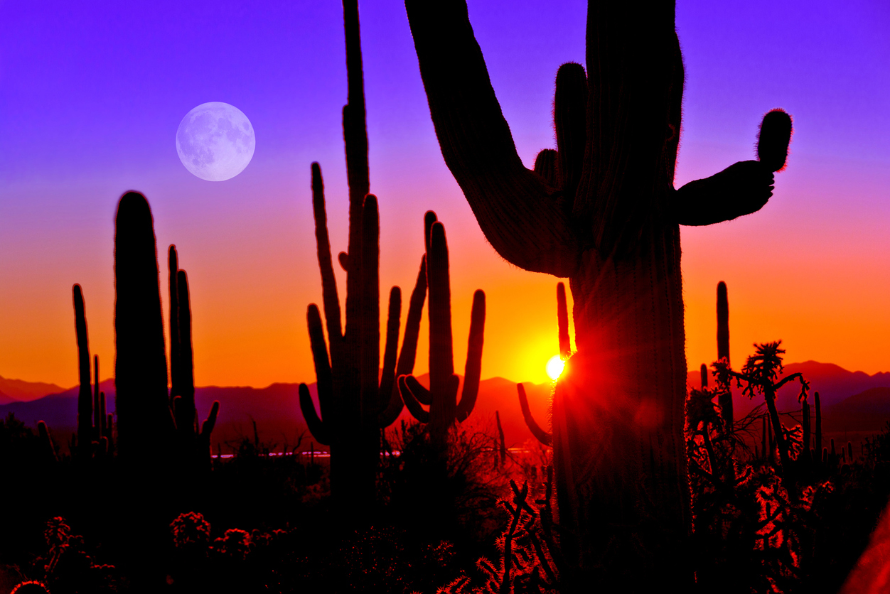 Why the Summer Months Are a Great Time To Be In Scottsdale