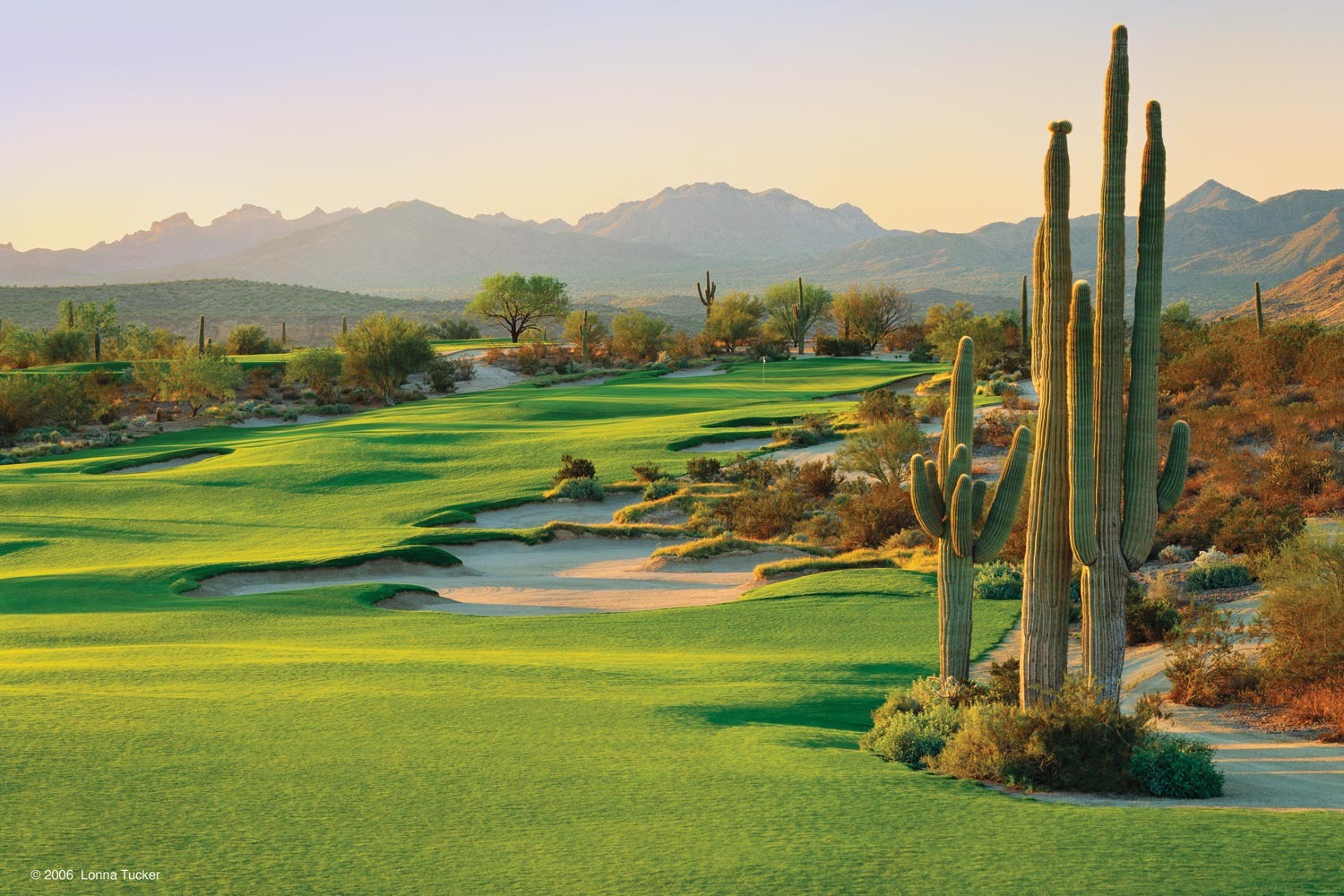 What is Scottsdale Is Known For?
